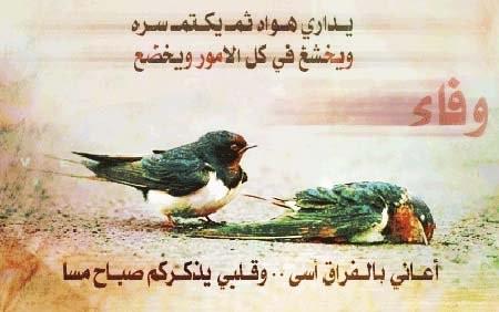 love gazal image SEPN